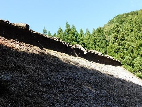 YANENOHSHUU (3).JPG