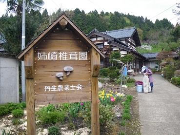anaseki 11-0501.JPG