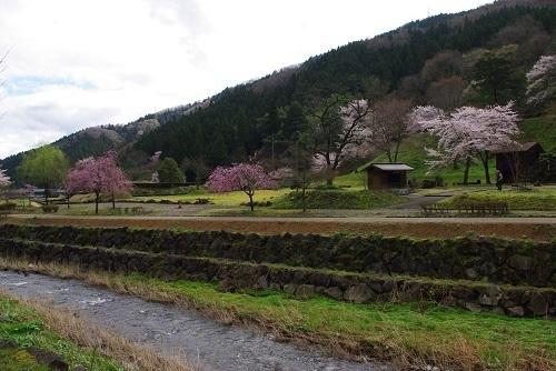 asakurayakata  (2).JPG