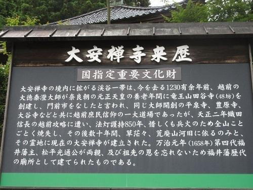 daiannzennji  (1).JPG