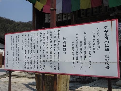 kinomejizou  (5).JPG