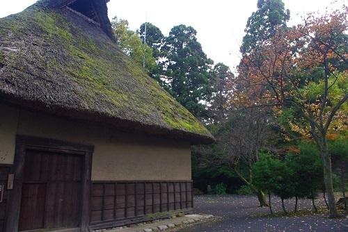 uryuuke  (6).JPG