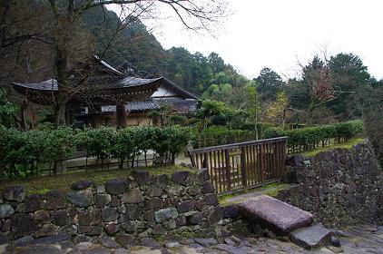 aduchijou 10-0303.JPG