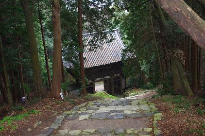 aduchijou 10-0311.JPG