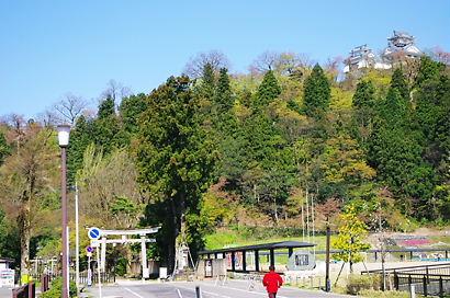 asaichi 10-0401.JPG