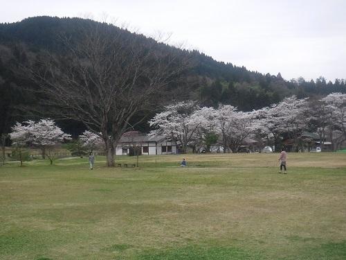 asakuraiseki 04.05 (6).JPG