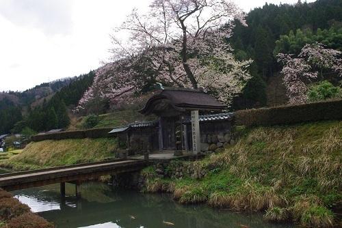 asakurayakata  (4).JPG