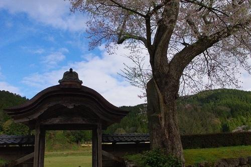 asakurayakata  (6).JPG
