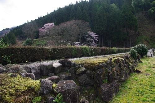 asakurayakata  (7).JPG