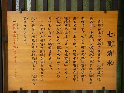 hanagaki 07-006.JPG