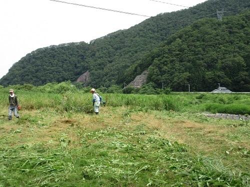 hinogawakusakari  (4).JPG