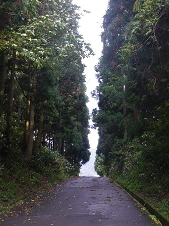 ikenokouchi 12-11 (10).JPG