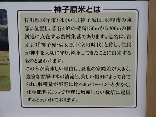 kamikotanada  (5).JPG
