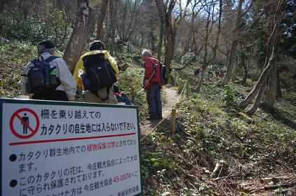 katakuri 10-0418.JPG