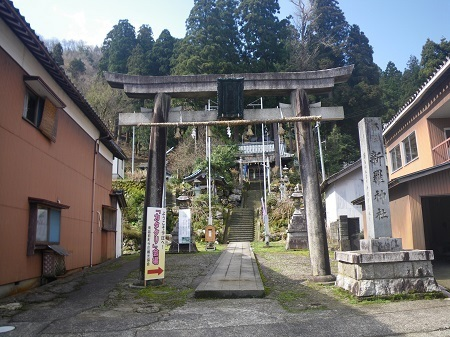 katakuri 14-047 (1).JPG