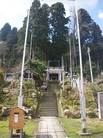 katakuri 14-047 (2).JPG