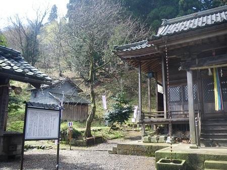 katakuri 14-047 (3).JPG