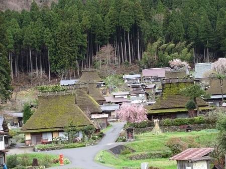kayanosato 15-0414 (9).JPG