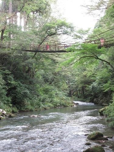 kazurabashi  (5).JPG