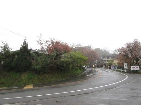 kitayama 15-0414 (4).JPG