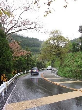 kitayama 15-0414 (6).JPG