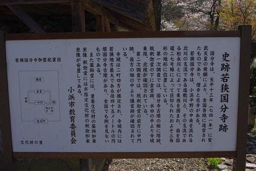 kokubunnji  (4).JPG