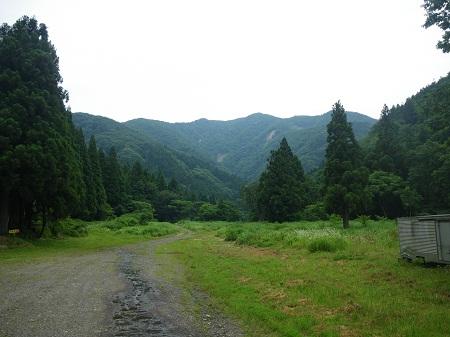 koukuratouge 12-06 (16).JPG