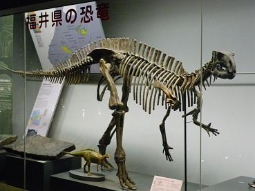 kyouryuu 10-1216.JPG