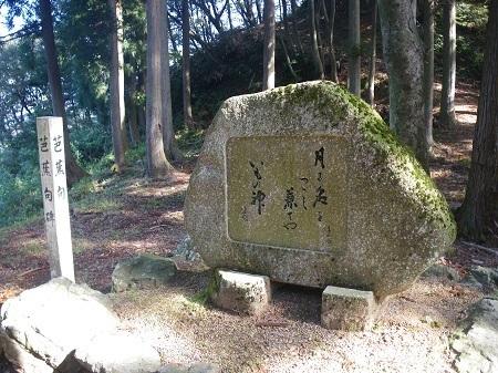 magochakusi 13-1018 (48).JPG