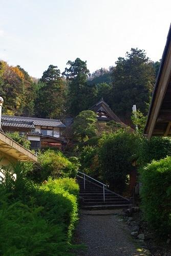 manntokuji kouyou  (1).JPG