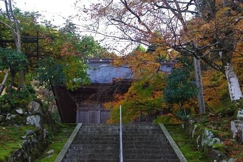 manntokuji kouyou  (14).JPG