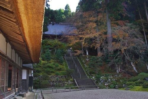 manntokuji kouyou  (2).JPG
