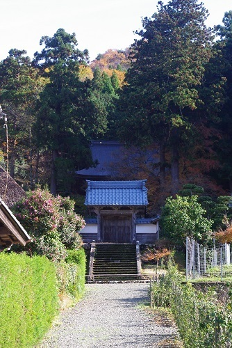 manntokuji kouyou  (27).JPG