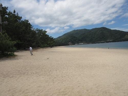 matsubara  (5).JPG