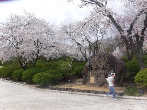 nishiyamakouenn 04.04 (1).JPG
