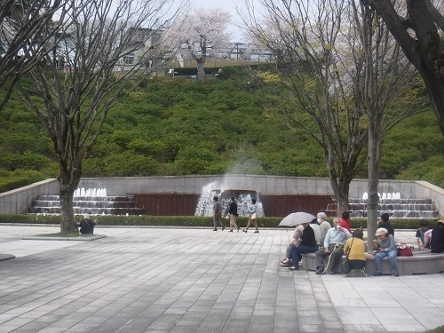 nishiyamakouenn 04.04 (6).JPG