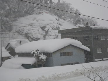ooyuki 11-0107.JPG