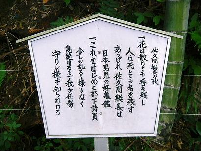 sakuma 08-005.JPG