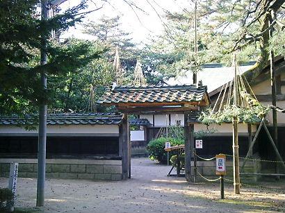 shibata 08-001.JPG