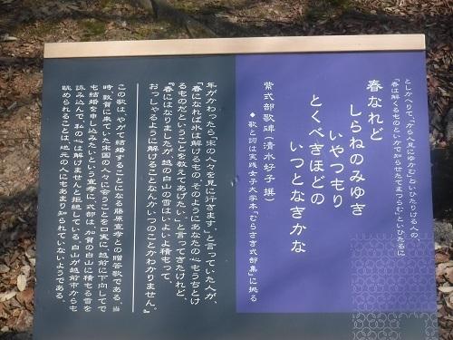 shikibukouenn  (7).JPG