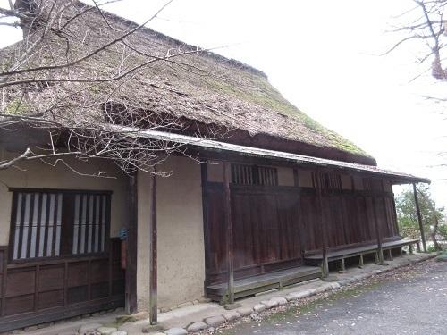 shinnmeisha (4).JPG