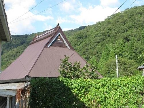 sugihashi  (3).JPG