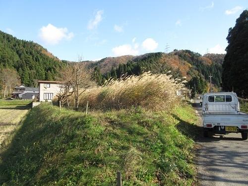 susukikaritori  (1).JPG
