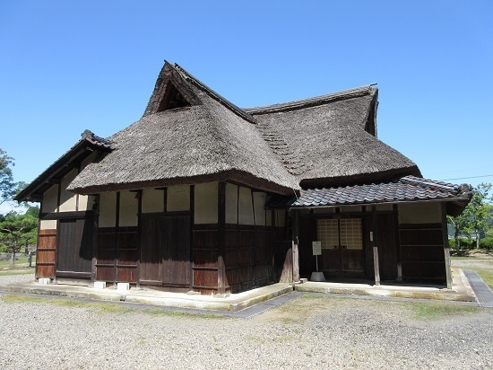 taniguchike (1).JPG