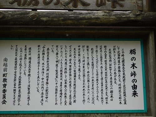 tochinokitouge  (2).JPG