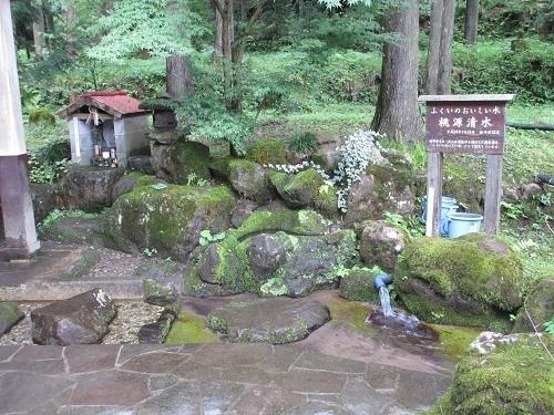 tougennshouzu  (4).JPG