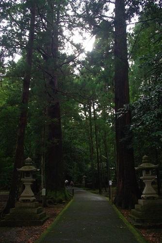 wakasahiko  (4).JPG