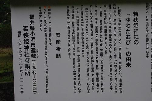 wakasahime  (7).JPG