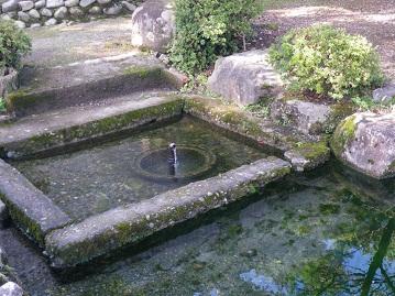 wakimizu 10-1108.JPG