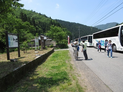 walking  (2).JPG
